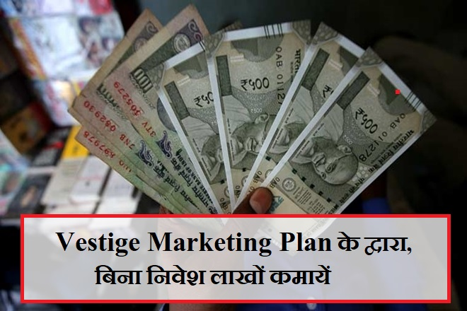 Vestige Marketing Plan
