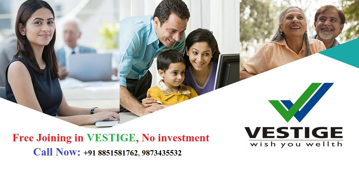Vestige Success Plan