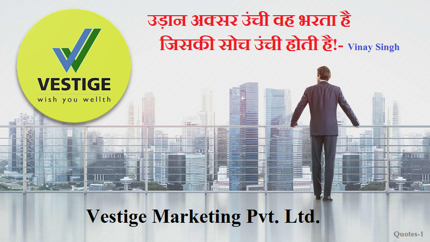 Vestige Business Plan