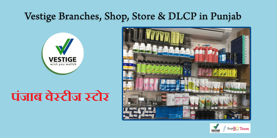 Vestige Branches and Store in Punjab